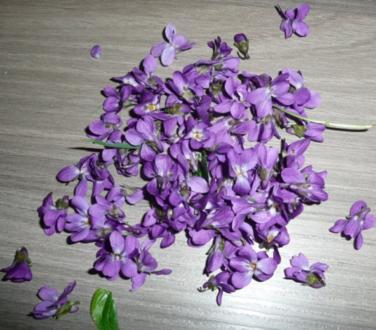 Veilchen - Gelee - Rezept - Bild Nr. 2