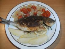 Fisch: Dorade gebraten - Rezept