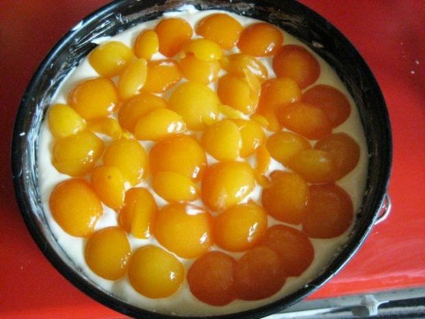 Käsekuchen - mit Aprikosen und Streusel - Rezept - Bild Nr. 11