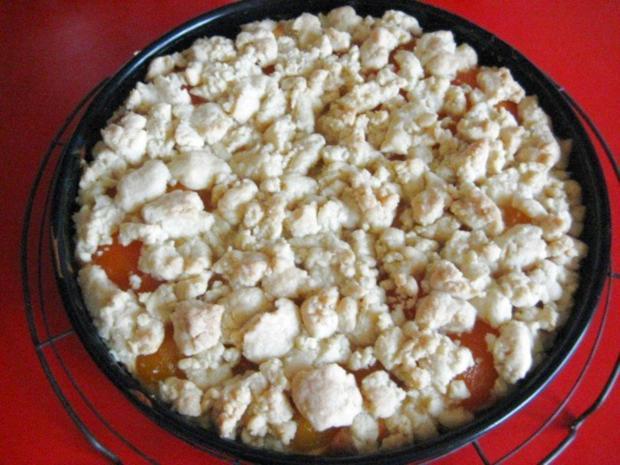 Käsekuchen - mit Aprikosen und Streusel - Rezept - Bild Nr. 13