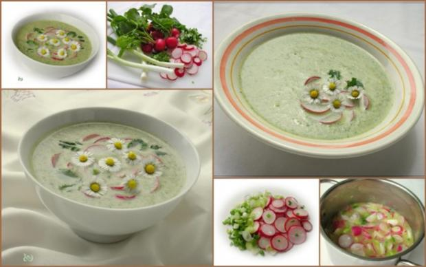 ~✿~  Radieschensuppe mit Gänseblümchen  ~✿~ - Rezept - Bild Nr. 3