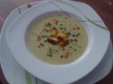 Zucchini-Suppe mit feinen Croutons - Rezept