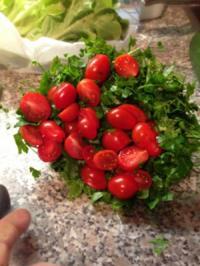 Grüner-Tomaten-Gurken Salat - Rezept