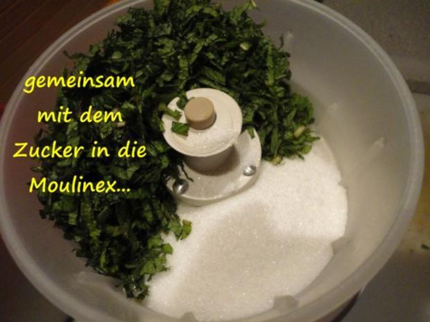 Minze Zucker - Rezept - Bild Nr. 4