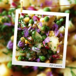 Kartoffelsalat bunt - Rezept