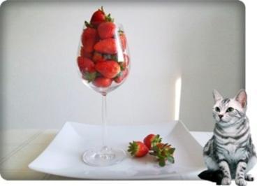 ❀ Erfrischender Milchshake mit frischen Erdbeeren ❀ - Rezept