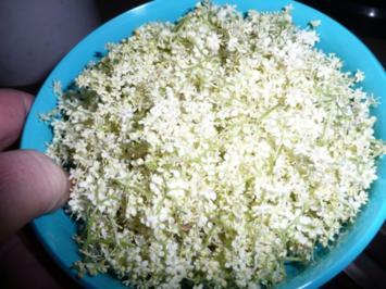 Holunderblüten - Sirup - Rezept