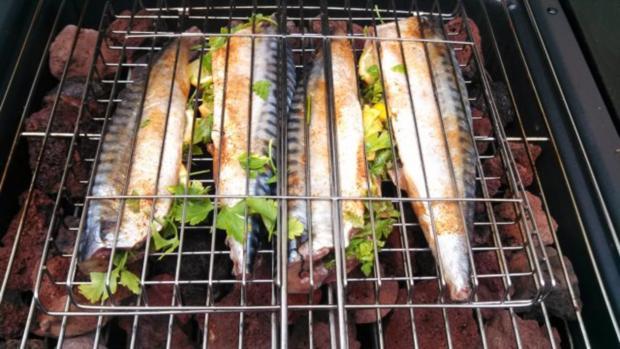 Makrele auf Lava Steine gegrillt - Rezept