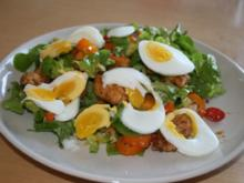 Bunter Salat mit Balsamico-Dressing - Rezept
