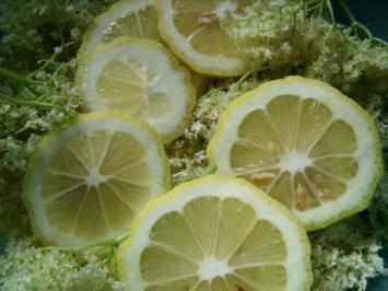 Getränke: Holunderblütensirup 2013 - Rezept