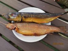 ......Fisch räuchern - Rezept