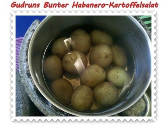 Salat: Bunter Habanero-Kartoffelsalat - Rezept - Bild Nr. 2