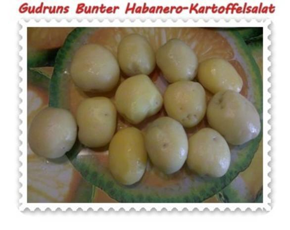 Salat: Bunter Habanero-Kartoffelsalat - Rezept - Bild Nr. 7
