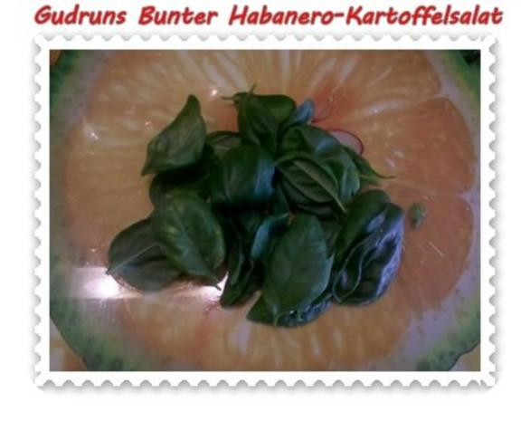 Salat: Bunter Habanero-Kartoffelsalat - Rezept - Bild Nr. 9