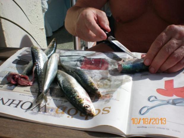 Fisch: Sardellen gegrillt - Rezept - Bild Nr. 4