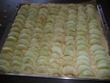 Apfelkuchen mit Quark- Schmand Topping - Rezept