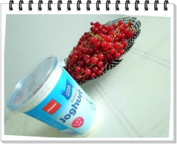 Erfrischend &  vitaminreich Johannisbeeren Shake  zum auslöffeln - Rezept - Bild Nr. 3
