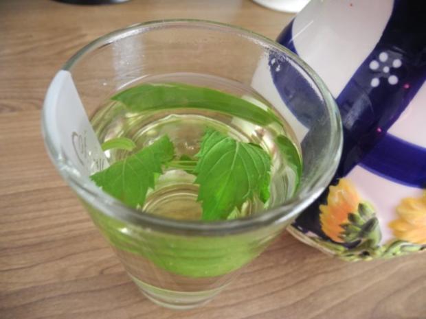 Frischen Pfefferminztee - Rezept - Bild Nr. 4