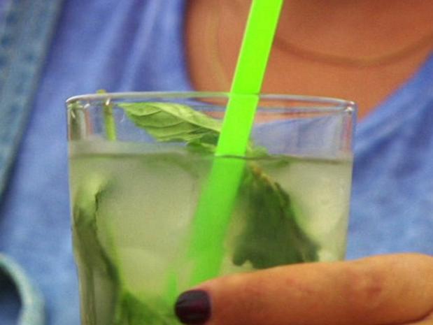 Mojito und Tropical Smoothie - Rezept