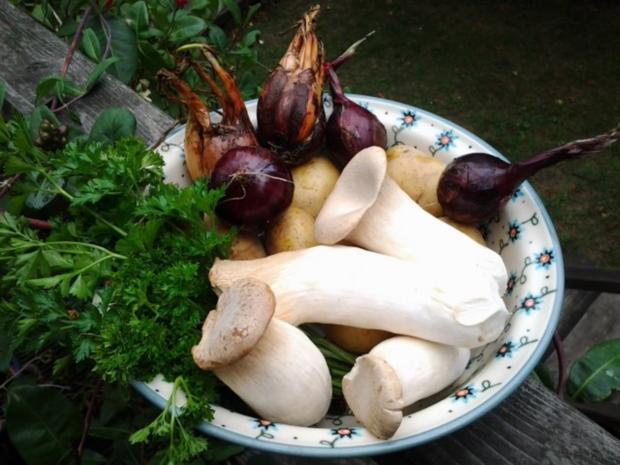 Kräuterseitlinge mit Bratkartoffeln - Rezept - Bild Nr. 2