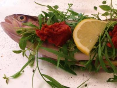 Forelle meets Kräuter und Tomatenbutter - Rezept
