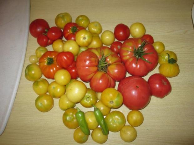 Italienische Tomatensauce - eingekocht - Rezept