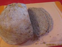 Brot: Dinkelbrot mit Sonnenblumenkernen - Rezept