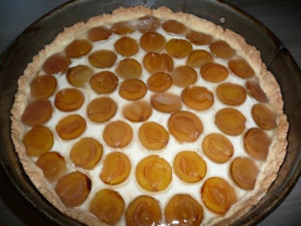 Mirabellen - Quark- Torte - Rezept - Bild Nr. 2