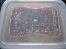 Vorrat: Gemüsebrühe gekörnt - Rezept