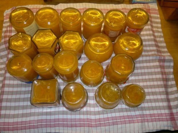 Orangenmarmelade - Rezept - Bild Nr. 5