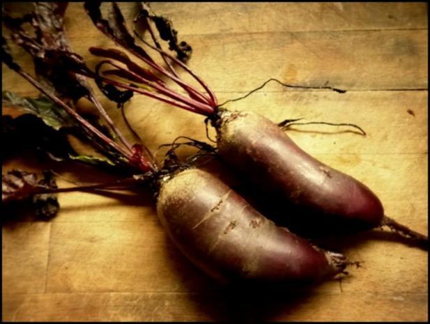Rote-Bete-Pappardelle mit Wiesenchampignons - Rezept - Bild Nr. 3
