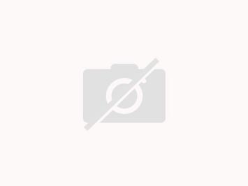 Hand aus Vanille Pudding abgehackt mit Blut für Helloween, Karneval, Party, Sylvester - Rezept