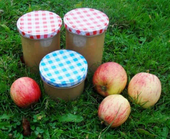 Apfelmus - Rezept - Bild Nr. 3