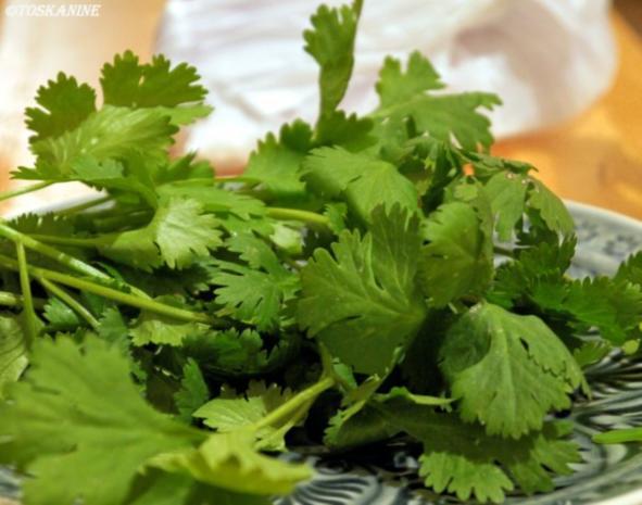 Curry mit Hähnchen, Blumenkohl und Zuckerschoten - Rezept - Bild Nr. 5