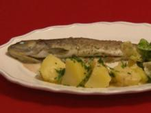 Rahmforelle vom Erler Wirt mit heimischem Kräutersalat und Salzkartoffeln - Rezept