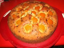 Versunkener Aprikosen Kuchen - Rezept