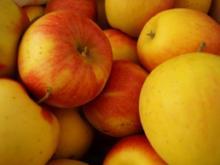 Apfel-Chili Chutney - Rezept