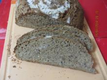Brot:Dinkelbrot mit Körnern - Rezept