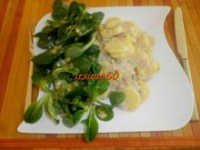 Bechamel - Kartoffeln - Rezept
