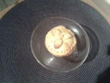 Mürbeteig - herzhaft - für Pasteten - herzhafte Tartes usw - Rezept