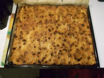 Kuchen: Apfelkuchen mit Quark-Schmand-Guss - Rezept