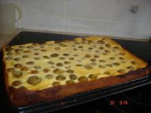 Mrabellenkuchen mit Quarkguss - Rezept