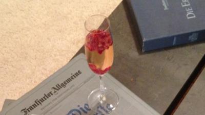 Irdische Drogen im Glas (Prosecco mit Granatapfel und Holunder) - Rezept