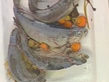 Forelle Blau - Rezept - Bild Nr. 16