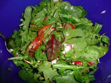 Baby Spinat - Rucola - Mangold rot - Salat - Rezept