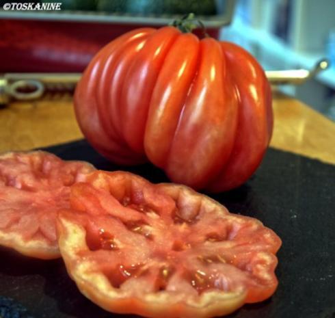 Gefüllte Zucchini mit Vanille-Tomaten - Rezept - Bild Nr. 9