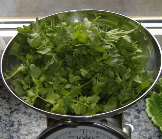 Bacalao mit grüner Sauce - Rezept - Bild Nr. 2