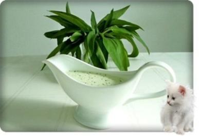 Bärlauchsauce auf Mayonnaise Basis - Rezept