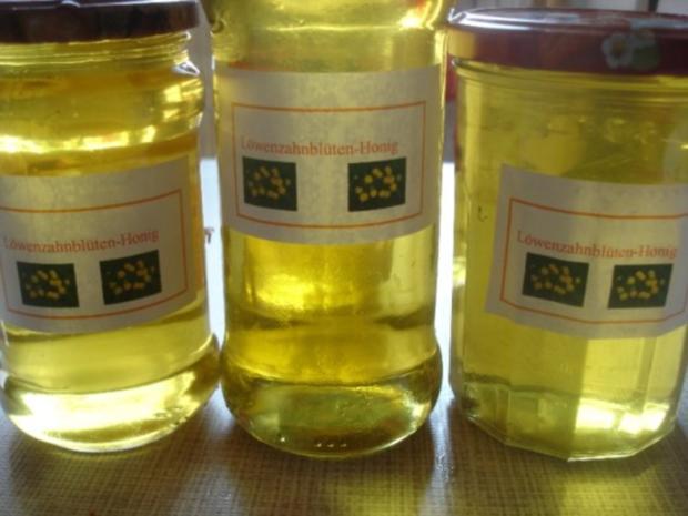 Löwenzahnblüten-Honig - Rezept