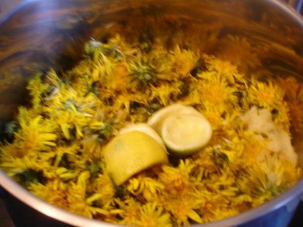 Löwenzahnblüten-Honig - Rezept - Bild Nr. 5